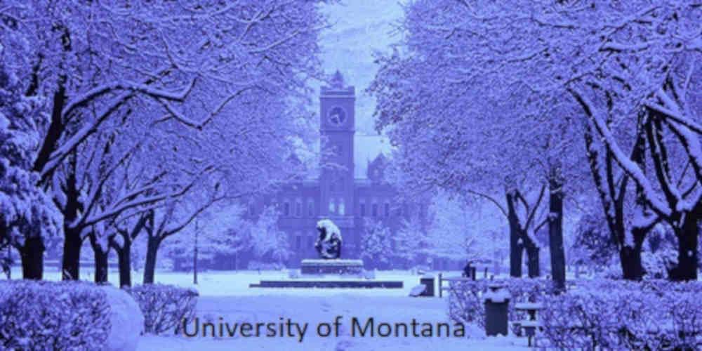 United States of America (Montana)'s School holiday calendar